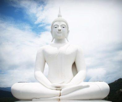 Manifesting calm